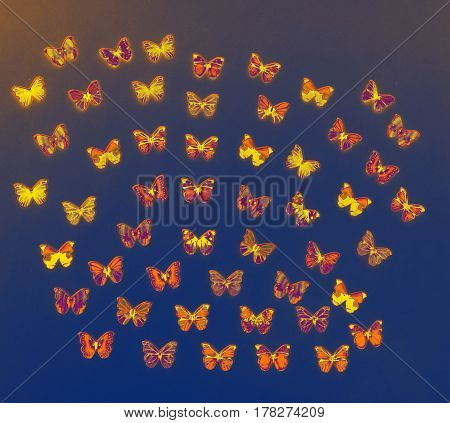 Lots of orange butterfly buttons flying everywhere