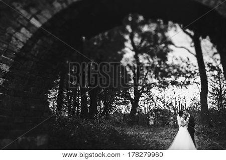 Bride And Groom Hug Standing Under An Old Brick Bridge