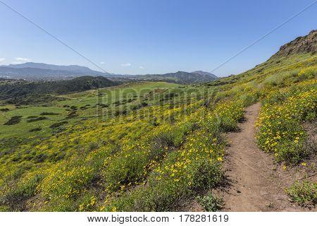 Green hillside view of Wildwood Regional Park in the Ventura County community of Thousand Oaks, California.