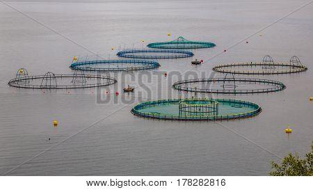 Salmon Farm In Norway