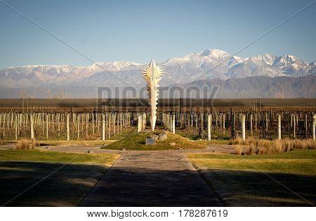 Wineyard in Mendoza, at the base of Los Andes mountains