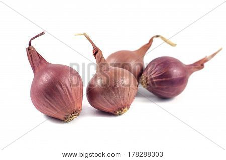 Onions isolated on white background, food ingredient.
