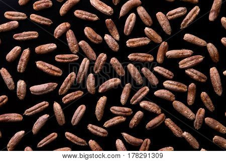 Seeds of the date palm on a black background