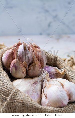 Garlic. Dried French garlic. Red garlic. Violet garlic.Garlic background. garlic bulbs on white marble.