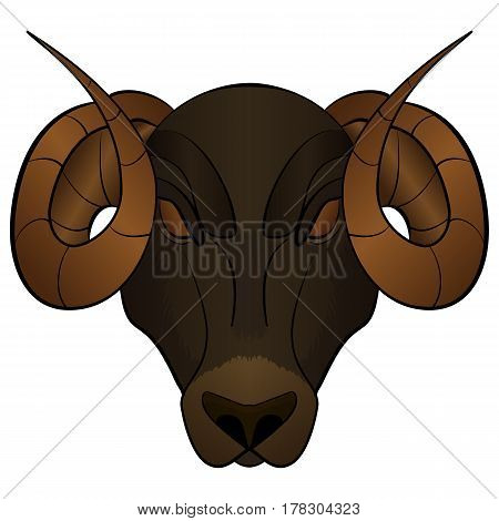 Cartoon Brown Ram head mascot Vector illustration