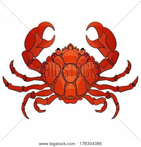 Vector hand drawn cartoon illustration crab character lifting up claws isolated on white background.