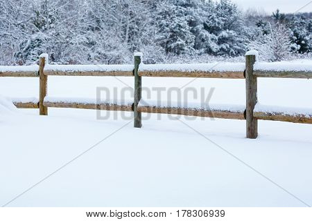 Snow covered fence and forest after a Wisconsin snow storm.