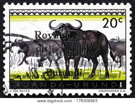 BURUNDI - CIRCA 1962: a stamp printed in Burundi shows Cape Buffalo African Buffalo Syncerus Caffer Large African Bovine circa 1962