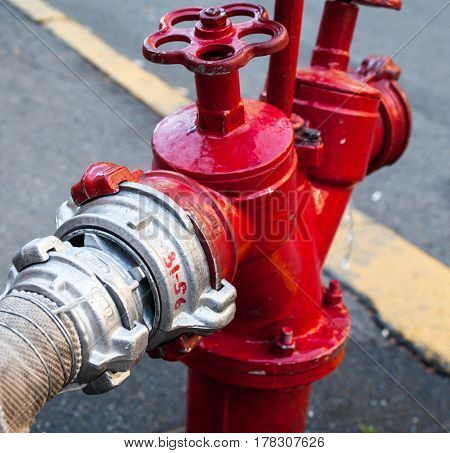 Red fire hydrant with connected hose. Close-up.