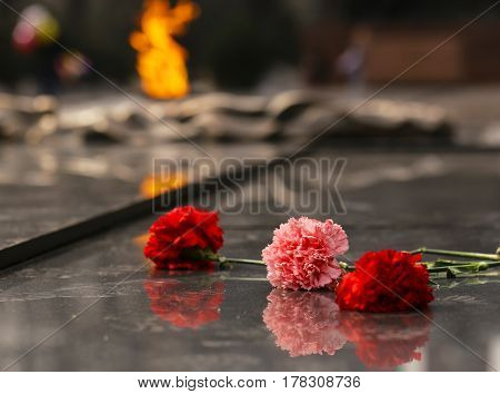 Carnations flowers on the monument of eternal fire - Victory Day concept