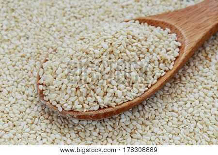 The sesame seed in wooden a spoon