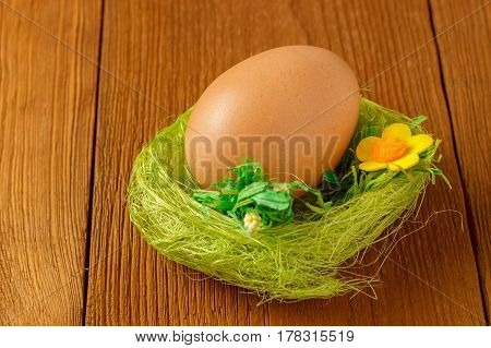 Egg in a green nest on a wooden background