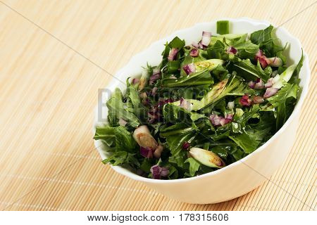 Vegan green spring salad with green salad and spring onion.