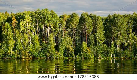 green forest river with reflection and waves in the spring