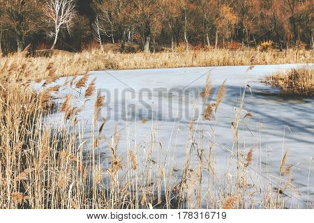 Dry Grass On The Shore Of A Snow-covered River, Landscape, In Retro Style