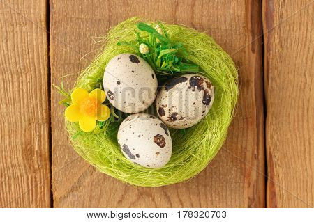 Egg quail in a green nest on a wooden background