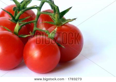 Fresh Cherry Tomato Closeup