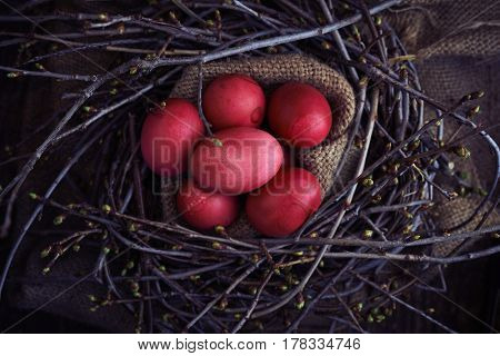 Easter eggs red in the nest with spring branches