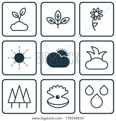 Set Of 9 Nature Icons. Includes Seashell, Sunflower, Sprout And Other Symbols. Beautiful Design Elements.