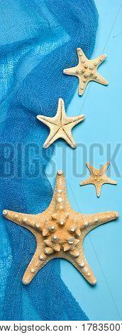 Marine blue background with seashells and starfish in fishing nets, border design panoramic banner