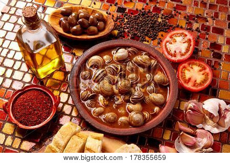 Tapas snail recipe from Spain in clay plate