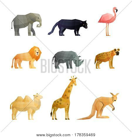 Southern wild animals polygonal icons set with giraffe kangaroo lion camel and pink flamingo isolated vector illustration
