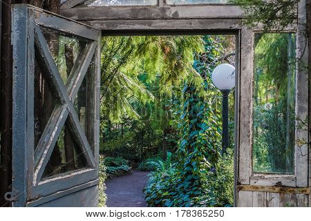 Vintage garden doors with bright green tropical plants on  background