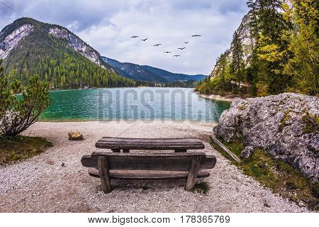 Wooden table and benches for picnics by the lake. Above the lake a flock of migratory birds flying. South Tyrol, Italy. The concept of walking and eco-tourism