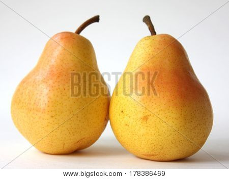 Two yellow pears, isolated on a white background