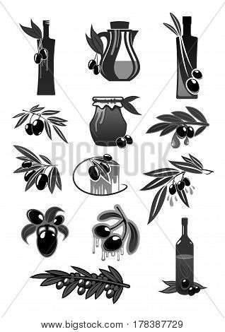 Olive fruits and olive oil bottles and pitchers symbols. Fresh green olive fruit harvest for Italian cuisine design or extra virgin oil food or cosmetic product packaging. Vector icons set