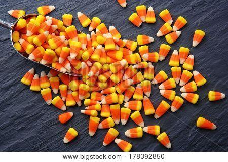 Tasty Halloween candies and scoop on dark background