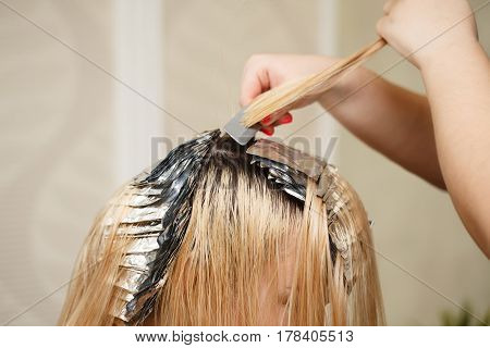 Professional hairdresser holds client's hair coloring. Bleaching the hair roots. Beauty saloon.