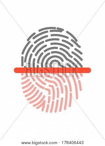 Black and pink half fingerprint shape graphic icon isolated on white. Two color prints separated by red line. Vector illustration of biometric authorization in flat design, security control symbol