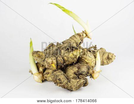 Turmeric powder and fresh turmeric on background.