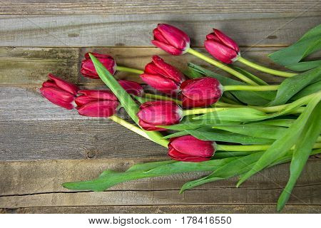 red tulip bouquet with water droplet on rustic wood