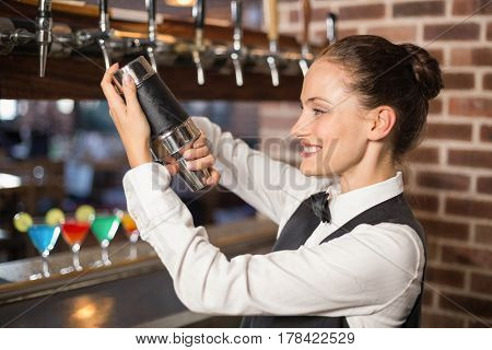 Beautiful barmaid shaking up a cocktail in a bar