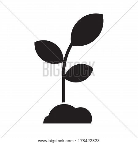 Seedling with leaves and soil. Abstract growing plant silhouette vector illustration. Spring sprout icon in outline design. Growing and gardening symbol.