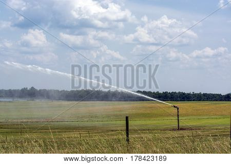 Irrigation head pumping on a field in Alabama