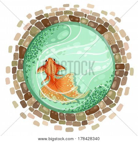 goldfish stones bricks pond top view vector illustration