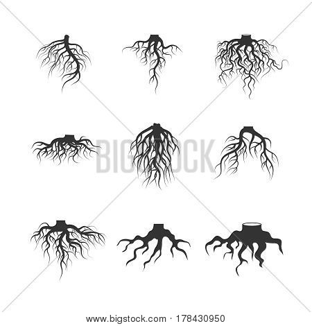 Tree and plant underground roots vector set. Tree root black. illustration of plant silhouette root