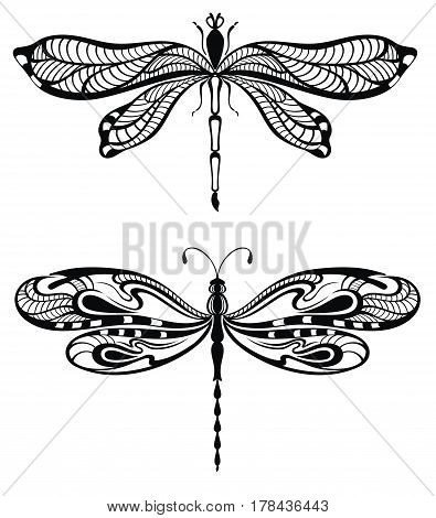 Dragonfly illustration . Tattoo Dragonfly set for your design