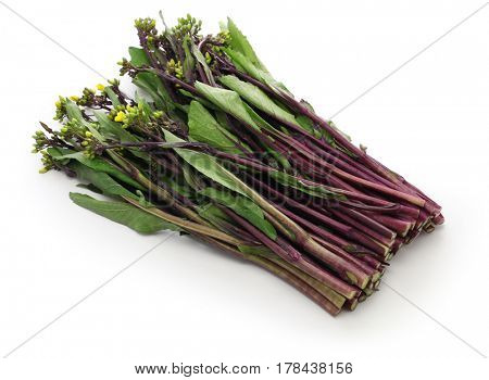 hon tsai tai, purple choy sum, purple stem mustard, chinese vegetable