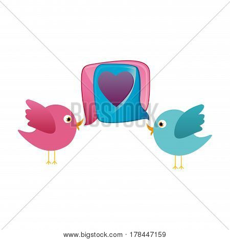 colorful couple cartoon bird animal with dialog box heart icon vector illustration