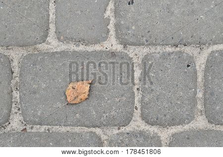 Fragment Of The Road Laid Out Of The Paving Stone With Orange Leaf