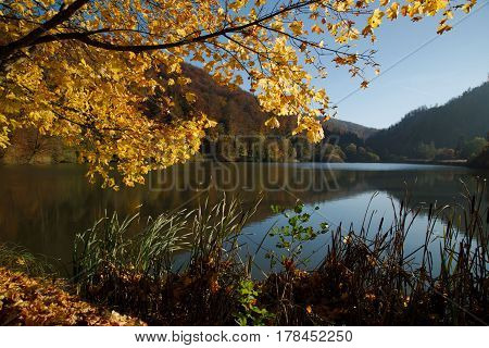 Autumn at Lucelle Lake (Lac de Lucelle) in Swiss Jura