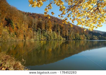 Lac de Lucelle (Lucelle Lake) and the forest with reflection in autumn. Panoramic view