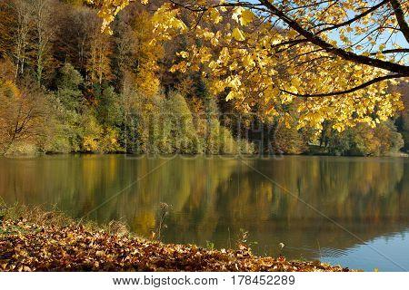 Autumn landscape on a sunny day. Lac de Lucelle (Lucelle Lake) Switzerland