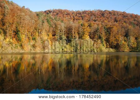 Reflection of the autumn forest in Lake Lucelle (Lac de Lucelle) Switzerland