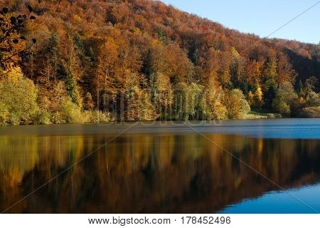 Autumn forest with reflection in the Swiss Lac de Lucelle (Lucelle Lake)
