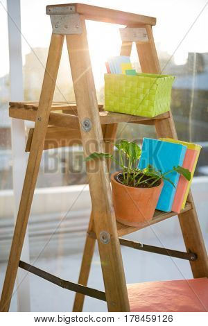 Wooden stairs with books and plant on it